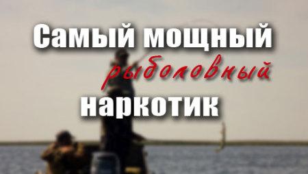 Самый мощный рыболовный наркотик