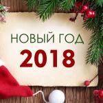 Новый год на базе «Московская» 2018