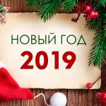 Новый год на базе «Московская» 2019