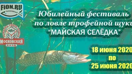 Фестиваль «Майская Селедка» 2020